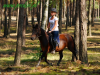 granda10-konie-huculskie