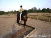 Jesien2011-konie-huculskie-8