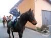 Huculskie jesień konie 4