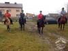 Huculskie jesień konie 5