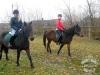 Huculskie jesień konie 6