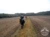 Huculskie jesień konie 7