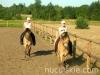lato2008-konie-huculskie-6