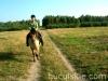lato2009-konie-huculskie-14