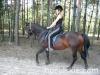 lato2009-konie-huculskie-30