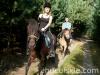 lato2009-konie-huculskie-31
