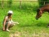 lato2009-konie-huculskie-05