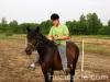 lato2011-konie-huculskie11