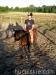 lato2011-konie-huculskie19