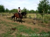 lato2011-konie-huculskie20
