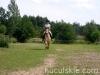 lato2011-konie-huculskie24