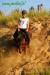 lato2011-konie-huculskie7