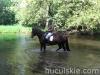 lato2013-huculskie-6