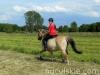 lato2013-konie-huculskie-3