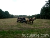 wiosna2010-jazda-konna-6
