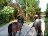 wiosna2011-jazda-konna-13