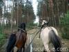 wiosna2011-jazda-konna-6