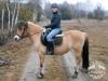 15 Konie Huculskie nauka jazdy