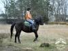 28 Konie Huculskie nauka jazdy