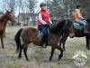 29 Konie Huculskie nauka jazdy