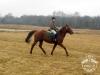 3 Konie Huculskie nauka jazdy