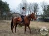 30 Konie Huculskie nauka jazdy