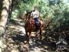 34 Konie Huculskie nauka jazdy