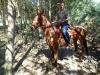 35 Konie Huculskie nauka jazdy