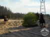 42 Konie Huculskie nauka jazdy