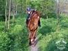 44 Konie Huculskie nauka jazdy