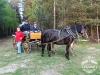 47 Konie Huculskie nauka jazdy