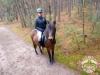 8 Konie Huculskie nauka jazdy