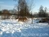 zima2011-konie-huculskie-1