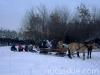 zima2013-jazda-konna-37