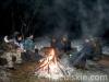zima2013-jazda-konna-40