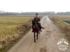 11 konie huculskie zima