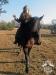 9 konie huculskie zima