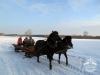 Zima huculskie (1)