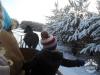 Zima huculskie (7)