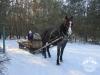 Zima huculskie (15)