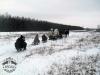 Zima huculskie (2)