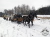 Zima huculskie (3)