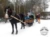 Zima huculskie (5)
