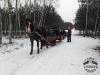 Zima huculskie (6)